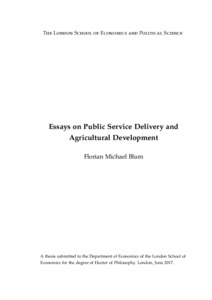 Essay on service delivery